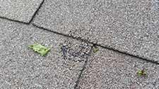 What Does Hail Damage to Roofing Shingles Look Like?